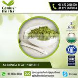Health Supplements Moringa Leaf Powder Manufacturer From India