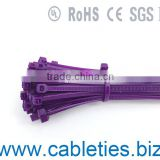 Wholesales Self-Locking 600pc assorted cable ties