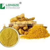 Natural and Nutritional High-quality Food -grade Tumeric Root Powder Extract with 95% Curcumin
