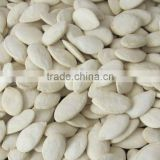 Roasted and Salted Snow White Pumpkin Seeds 11cm 13cm