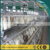 Guangzhou Factory chicken wire cage mesh/chicken wire cage rock wall