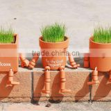 indoor grow kits cartoon grass head toy