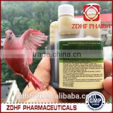 Herbal Racing Homing Pigeons Natural Remedies For Viral Infections