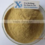 GMP Kosher Natural Panax Notoginseng root Extract