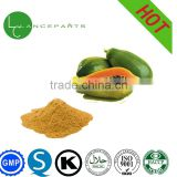 High Quality Freeze dried Papaya Powder