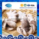 iqf frozen whole cleaned baby octopus for sale