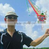 fly dragon kite
