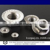 Stainless steel DIN 6923 Hexagon Flange Nut