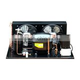 cold room 220V/1PH/60HZ Secop or Embraco hermetic compressor condensing unit