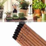 natural funny promotion wood flower fruit grass seeds sprout plant pencil with seeds
