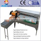 Eggs washing, drying, candling, oil spraying and grading egg machine, 100% stainless steel egg grading machines