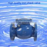 Ductile iron double flange check valve