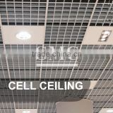 Cell Ceiling