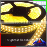 Outdoor 2700K Warm White/ Cold White/RGB Emitting Color And Light Strips Item Type 12V Waterproof Bright Strip Light