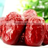fresh Dried red Organic Chinese dates / jujube