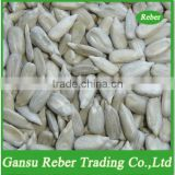 Sunflower Seeds Kernel(Confectionary Grade)