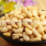 Tastey Pine nut and Pine Kernel