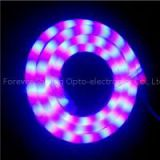 IP68 Flexible Neon Tube RGB 12V High Power/led Neon Flex/led Neon Tube