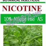 10% Nicotine AS, botanical insecticide,