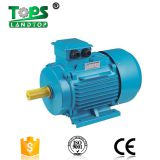 3 phase squirrel cage induction motor Three Phase Asynchronous Induction Electric Motor