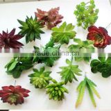2016Hot sell artificial plant artificial small potted succulent plants decor mini plants