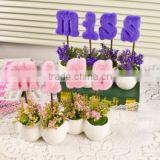 Wholesale outdoor /indoor decorative green plants, artificial flower potted plants