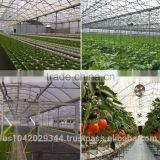 Versatile Nursery Greenhouse for Seedling, Soilless agriculture products and Drip Irrigation
