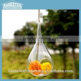 Medium Hanging Glass Teardrop Vase, Terrarium                                                                         Quality Choice                                                     Most Popular