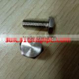 S32760 ASTM F55 full thread stainless steel fastener hex bolts & nuts Zeron100 en1.4501