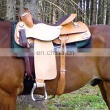 Horse Custom trail saddle