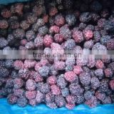 Chinese IQF frozen fresh blackberry fruit bulk