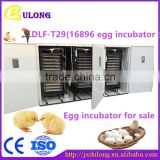 Top selling 16896 eggs Energy saving commercial chicken incubator for sale