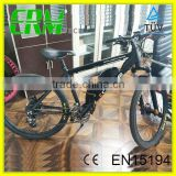High quality brand electric mountain bike with Torque Sensor