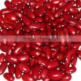 Red Kideny Bean