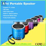 Amplifier FM Music Radio Player Mini Speaker with TF Card and U-disk FM Function speaker for phone