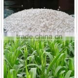Manufacturer Good price ZnSO4.H2O Fertilizer From China
