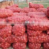 60mm size red onion red onions packing fresh red onions for sale