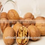 Shanxi Fenyang Mayifang Thin skin Walnuts in Shell,crushed walnut shells,black walnut shells,