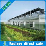 Eco Friendly,Easily Assembled Feature and Nature Pressure Treated Wood Type 8mm Thickness Polycarbonate Greenhouse