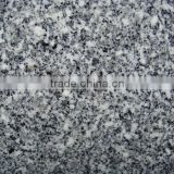 White grain granite/big slab/cut to size/for floor wall countertop/2000*600mm