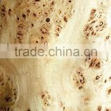 hat sale cheap sliced cut natural poplar burl wood veneer for wooden furniture door wall face skins
