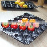 Plastic Apple Packing Container