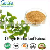 Low Pesticide Residue Natural Ginkgo Biloba Leaf Extract