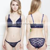 Z91291A Sexy underwear women bra set lingerie set lace push up bra and panty set                                                                                                         Supplier's Choice