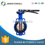 China supplier Free Sample full size Manual-Operated with Handle/Wormgear wafer type butterfly valve DN40