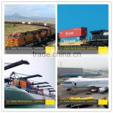 import export agents in guangzhou sea freight china to new zealand