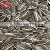 roasted and salted black sunflower seeds