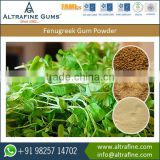 A Grade Quality Fenugreek Gum Powder Extracted From Pure and Fresh Seeds from Bulk Supplier