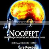 Noopept (N-Phenylacetyl-L-prolylglycine ethyl ester CAS No.157115-85-0),Nootropic supplement