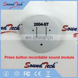 Press and hold recordable sound module with plastic housing